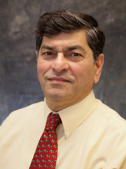 Professor Subhash Risbud